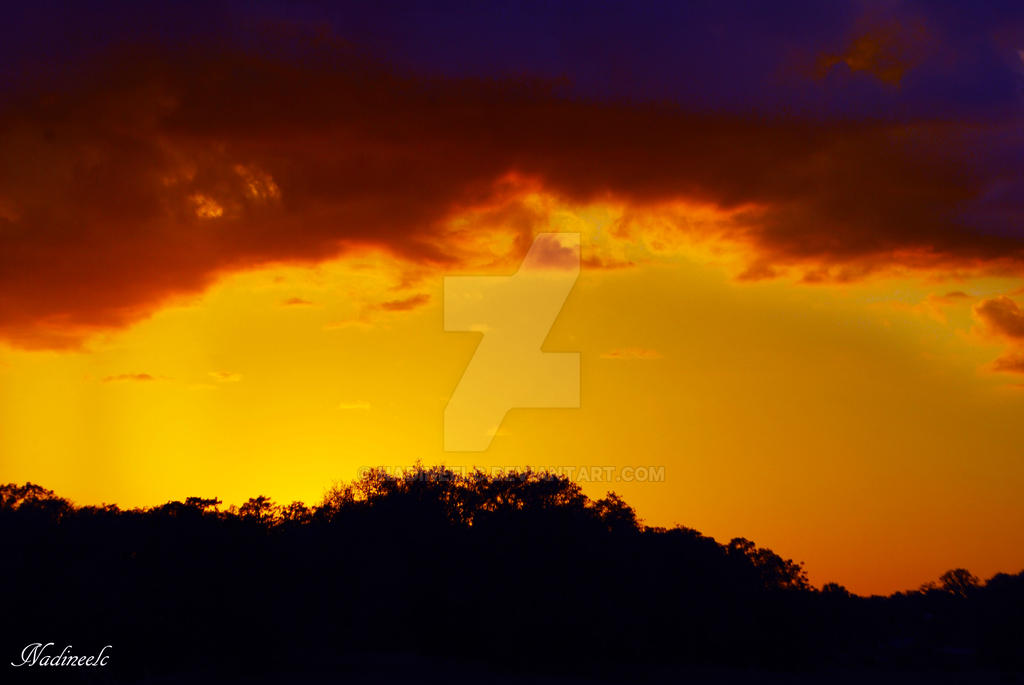 golden skies by nadineelc