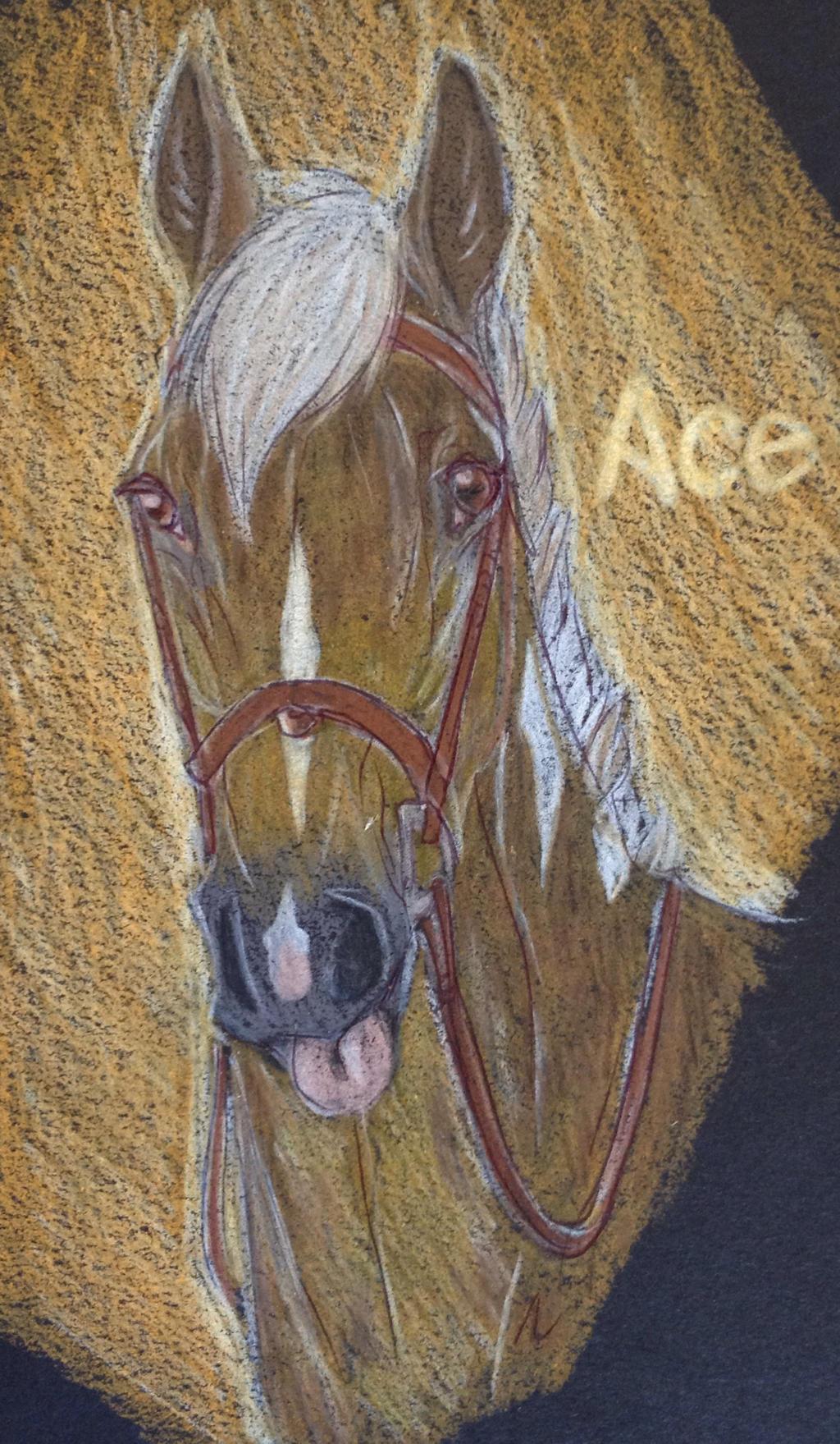 Ace by ShiaWolfe