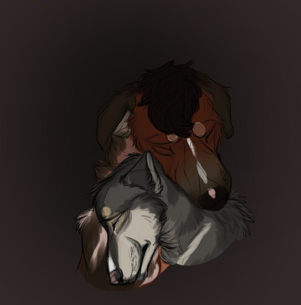 Comfort by ShiaWolfe