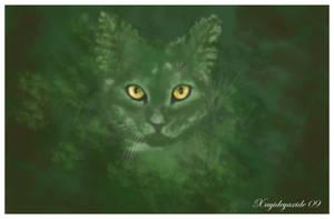 El gato Helecho- Fern Cat