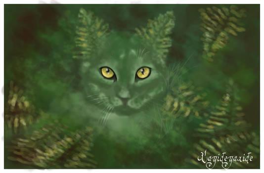 The Fern Cat - El gato helecho