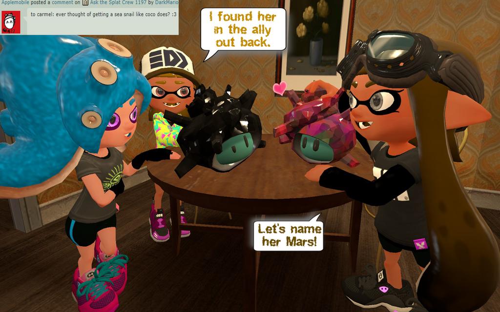Ask the Splat Crew 1206 by DarkMario2