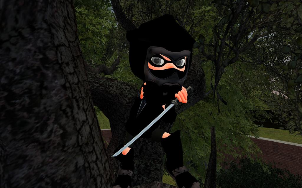 Ninja by DarkMario2