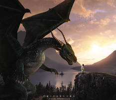 Meet the Dragon