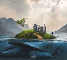 Turtle Island by Wiyarsena