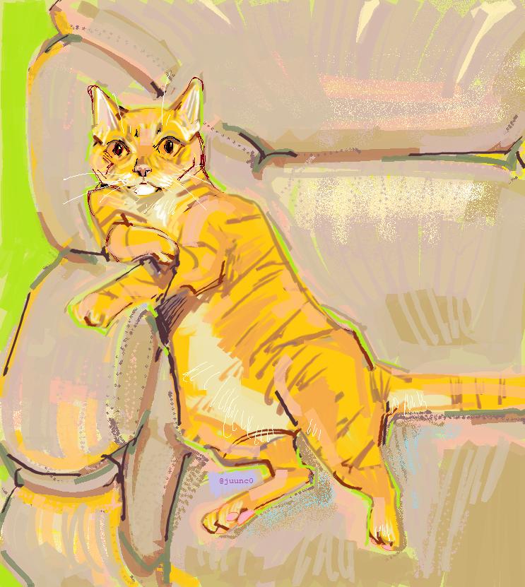 Katze by juunc0