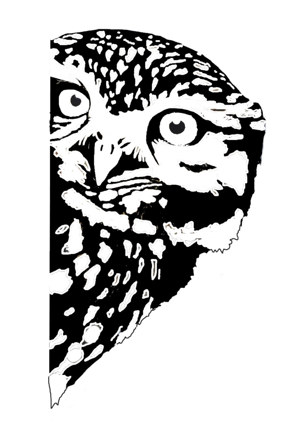 owl looking around the corner stencil by meepnitreal on ...