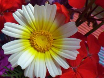 Flores 3 by Respinoza