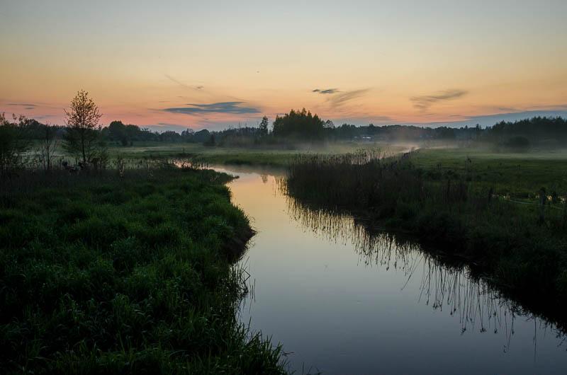 Bialowieza National Park by sinawali