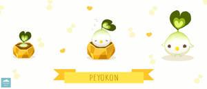 What is a Peyokon?