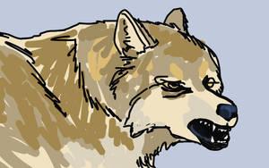 Wolf sketch by PeKj