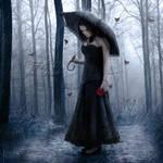 Falls Like Rain