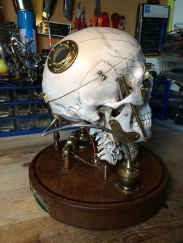 Revived fallen Steampunk Cyborg skull