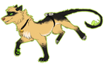 Chat Noir - Miraculous AU Dogs