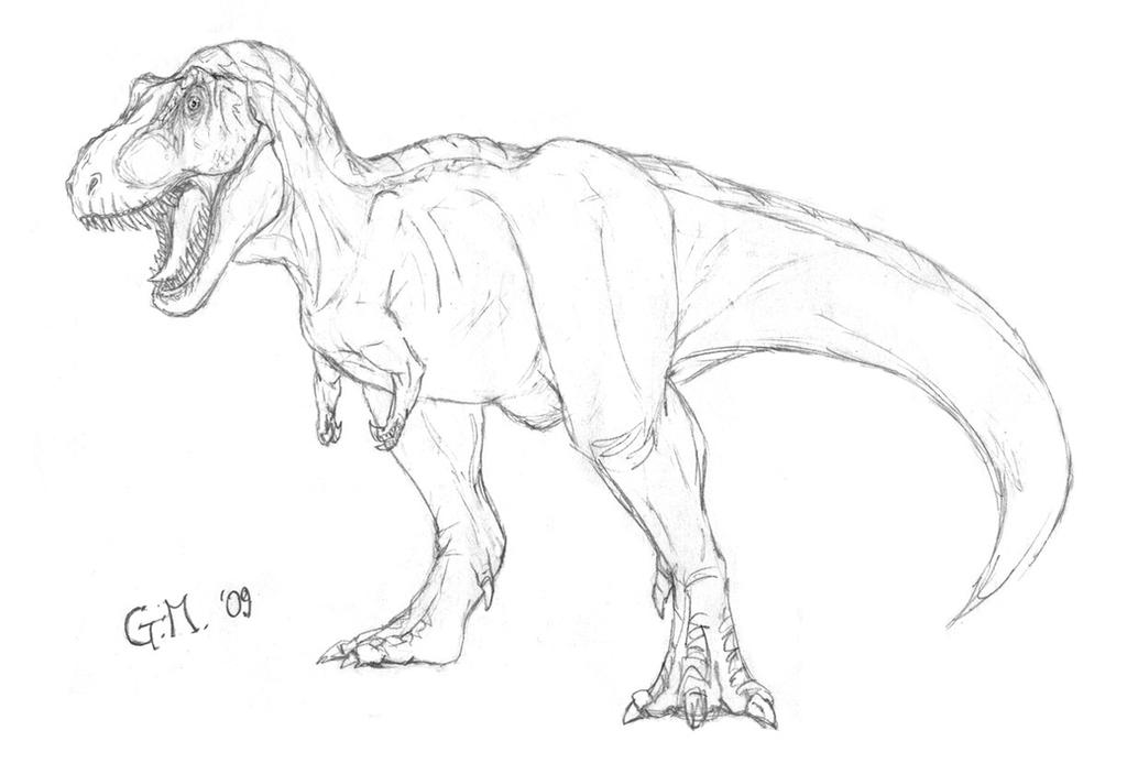 Image Result For T Rex Coloring Page Search