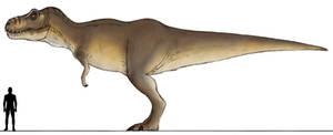 JPDinos: TLW Female T-Rex WIP