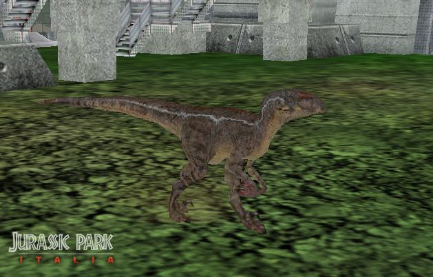 Movie Universe Pack Gallery: Alpha Male Raptor by T-Joe on ...