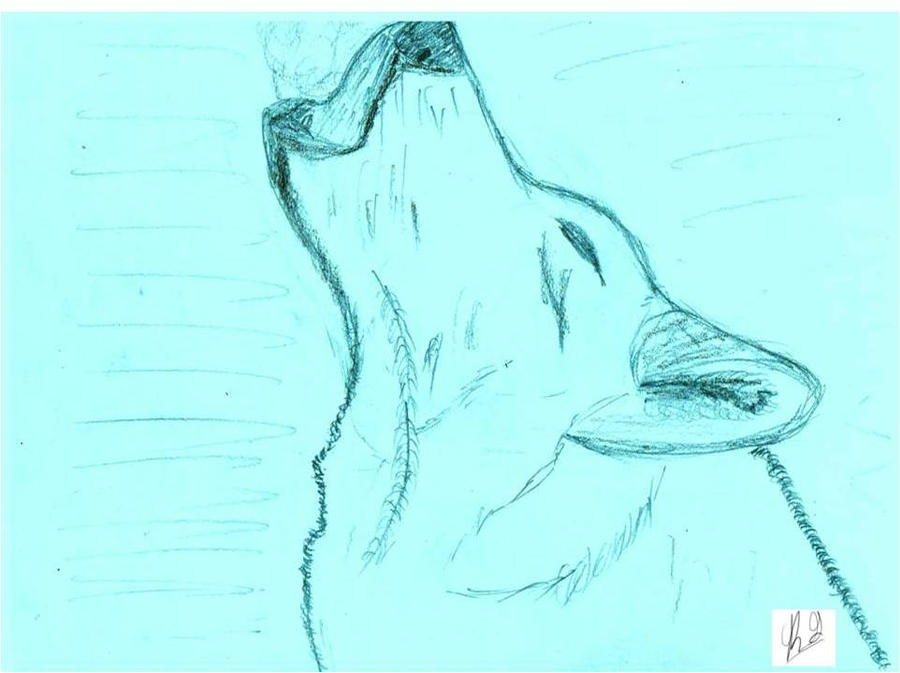 10 Wolf Minute Sketch by OutBack-Art
