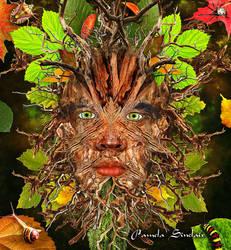Green Man by pams00