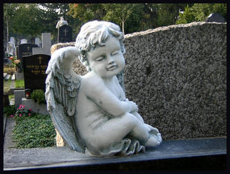 Angel by mrs-brainshaker