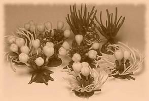 Venusian Plants - Sepia