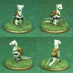 Percival the Wonder Ferret