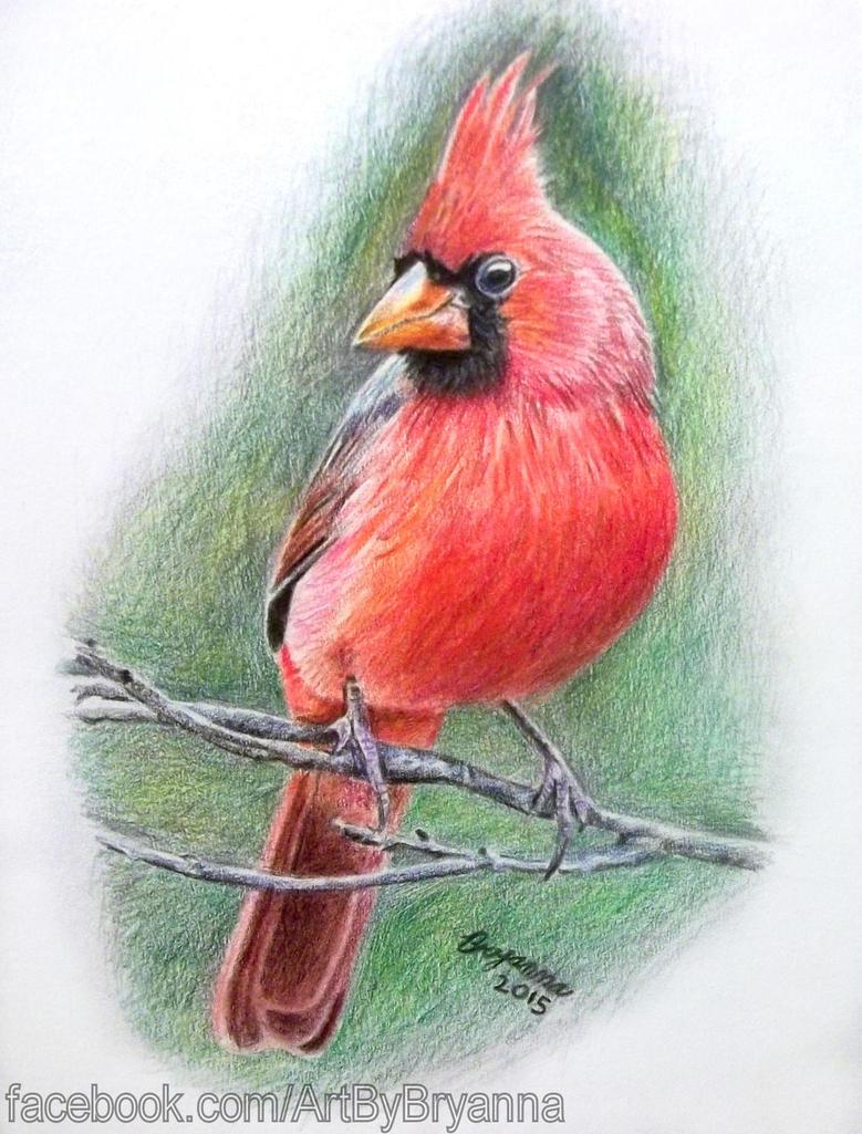 Cardinal by ArtByBryanna