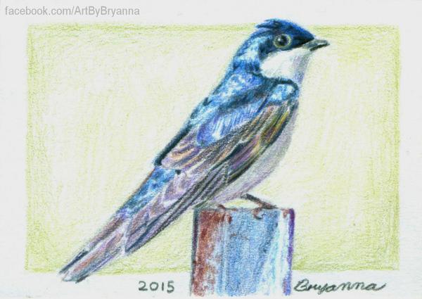 Bird ACT by ArtByBryanna