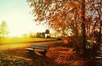 Last Sunshine
