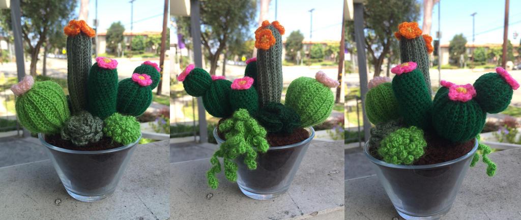 Mini Succulent/Cacti Garden by PurpleTakara
