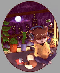 chillhop raccoon-