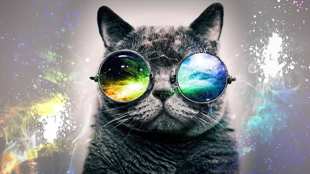HD Desktop Background Galaxy Cat By CommStudios