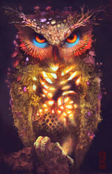 nature Owl by GONY-04