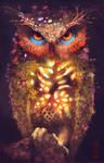 nature Owl