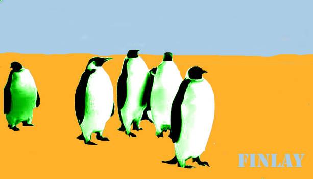 Finlay Minimal Penguin