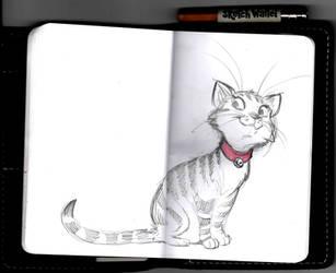 Cutie Cat by basakward