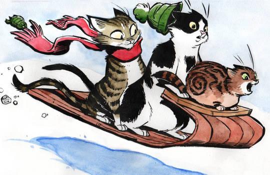 Sledding Kitties