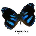 Blue Edges Butterfly PNG Vampstock