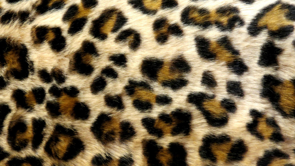 Leopard 3 Texture Vampstock by VAMPSTOCK on DeviantArt