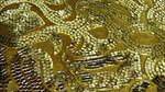 Mosaic Mirror Texture Vampstock