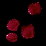 Rose Petal PNG 5 Vampstock