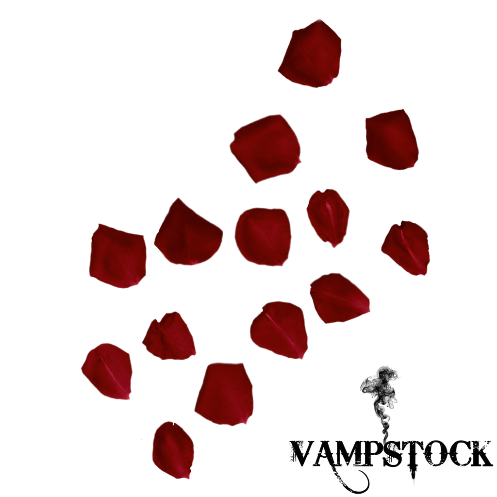 The gallery for --> Rose Petals Png