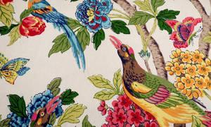Bird Fabric Texture Vampstock s by VAMPSTOCK