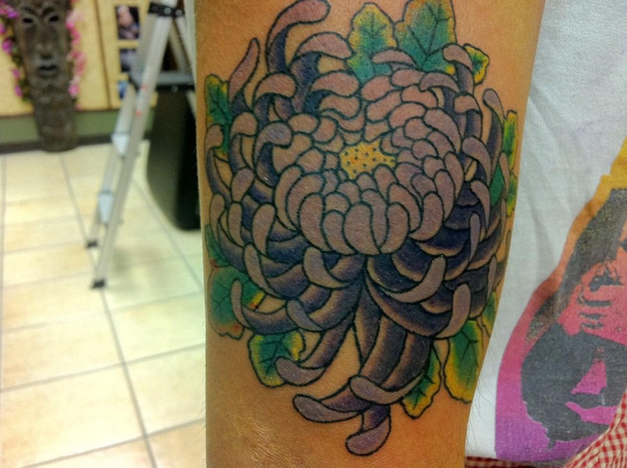 japanese chrysanthemum tattoo by sunnyshiba on DeviantArt