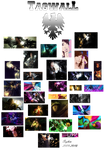 tag wall 4 2009 - 2010