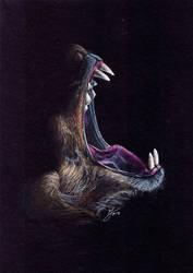 Beautiful Wildlife: Hyena in the Dark by AshVanGuard