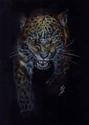 Beautiful Wildlife: Stalking Leopard by AshVanGuard