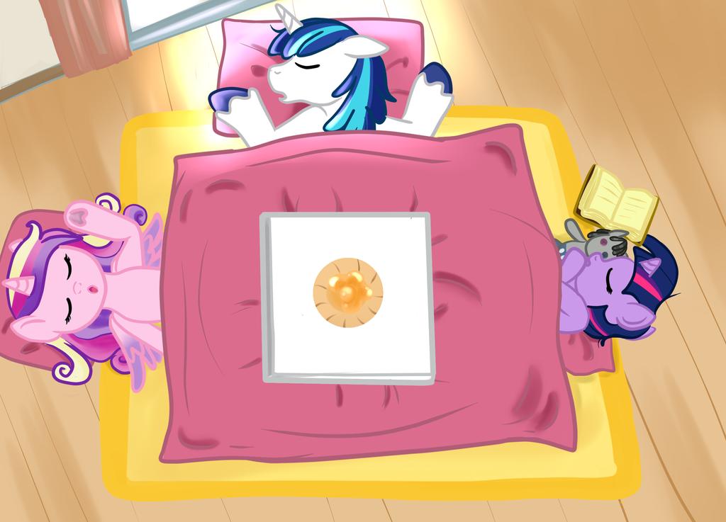 Kotatsu by allanah