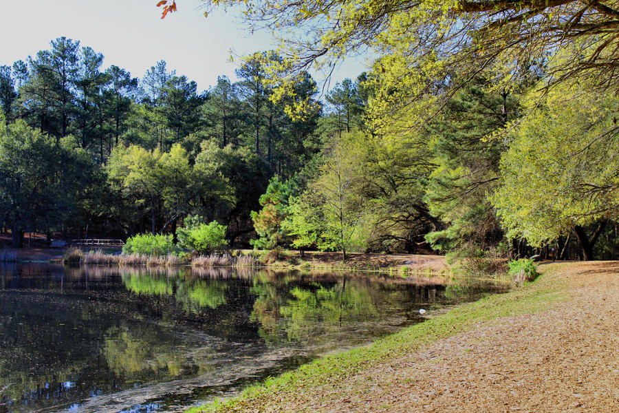 sesquicentennial state park - photo #8