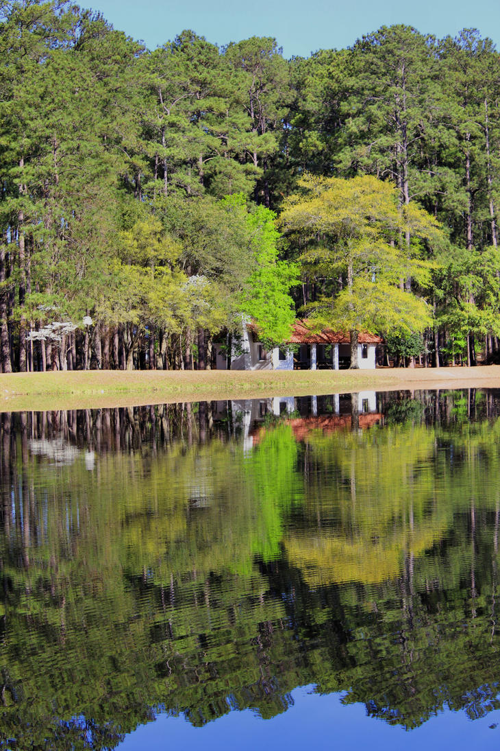 sesquicentennial state park - photo #26